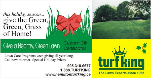 Turf King Lawn Care Christmas FLyer